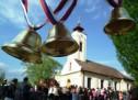 Vrbica i ove godine obeležena u crkvi u Borči