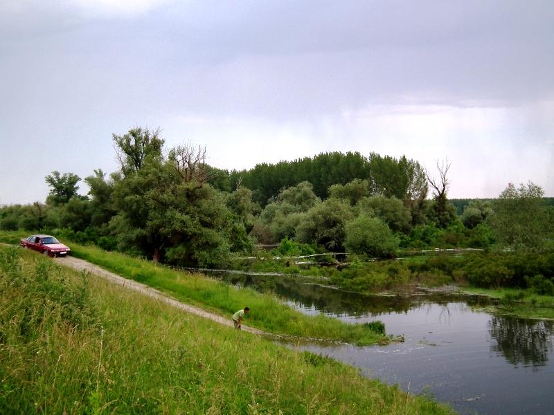 dunav-20-05-2014-06