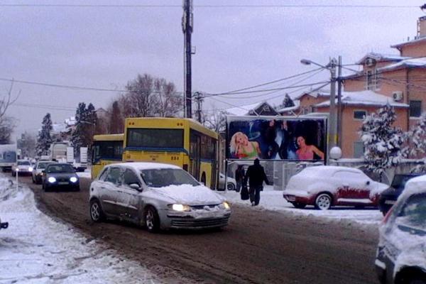 Autobus na liniji 95 izleteo sa puta u Borči (FOTO)