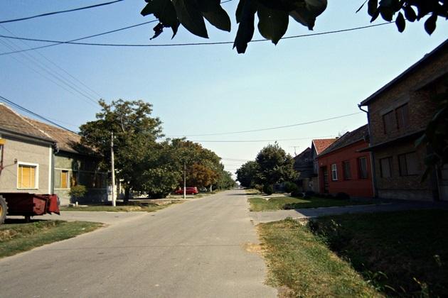 borca-ovca-jabucki-glogonjski-padinska-skela-kovilovo-crvenka-borca-ovca-ulaz-2015-09-04