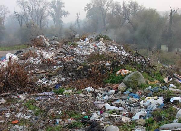 Ekološka katastrofa u Krnjači, LOBI