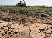 Srbija i sušna godina