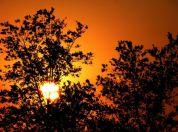 Lobi Zalazak Sunca