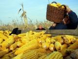 Poljuprivrednici Ovče najavili protest