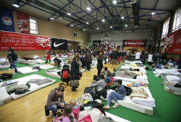 Organizovana preventivna dezinfekcija svih prihvatilišta u Beogradu