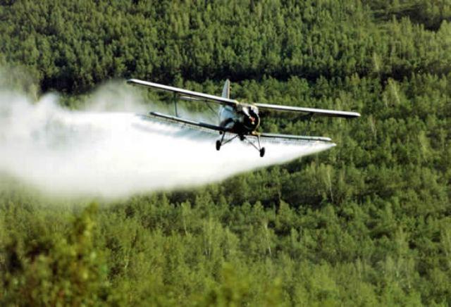 Počinje kombinovano zaprašivanje komaraca iz vazduha i sa zemlja