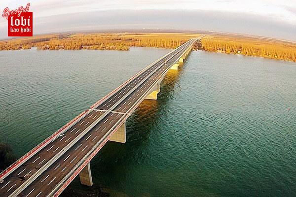 pupinov-most-iz-vazduha-2014-16