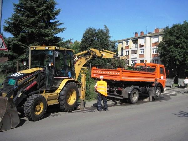 Akcija uređenja i čišćenja u Padinskoj skeli - 2015