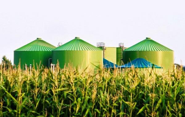 Biogorivo PKB-a grejaće delove leve obale - 2015